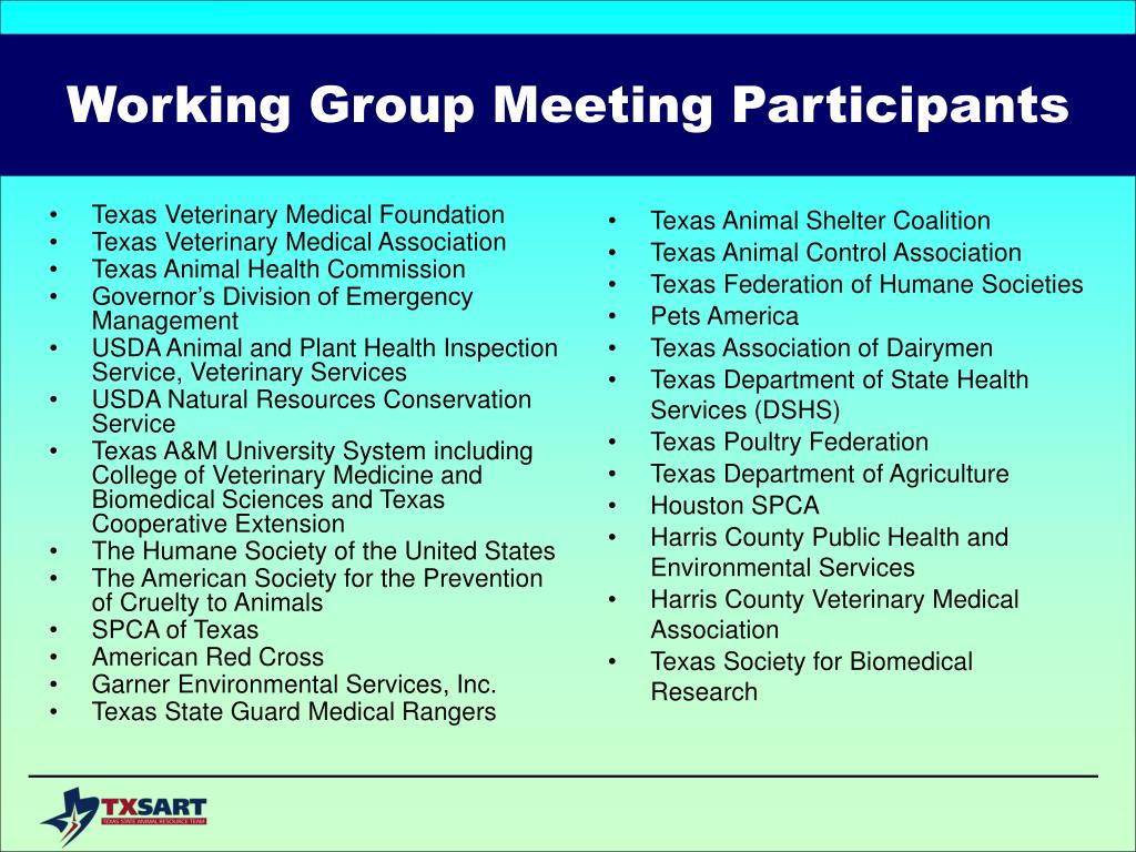 Working Group Meeting Participants