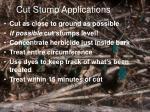 cut stump applications