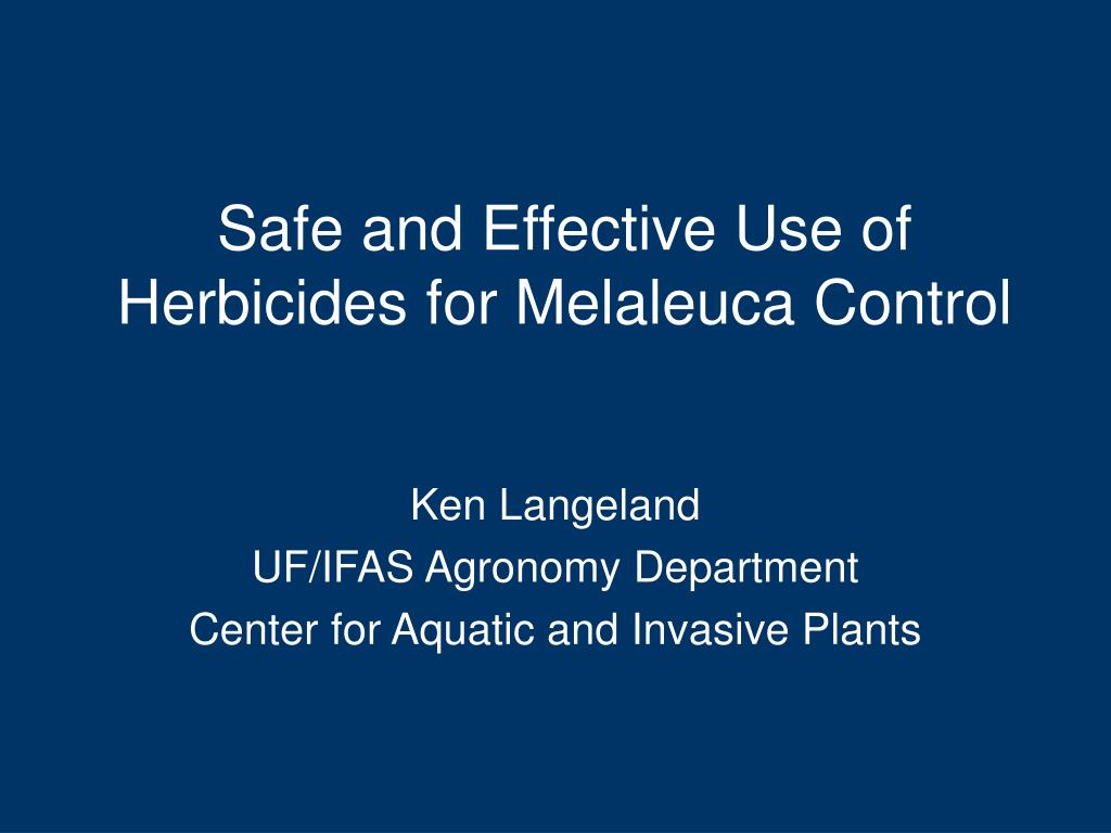 safe and effective use of herbicides for melaleuca control l.