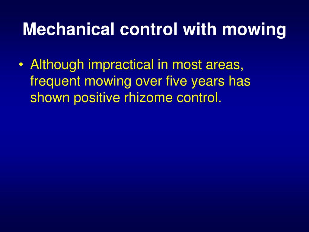 Mechanical control with mowing