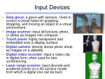 input devices18