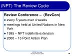 npt the review cycle