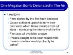 one megaton bomb detonated in the air32