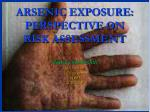 arsenic exposure perspective on risk assessment