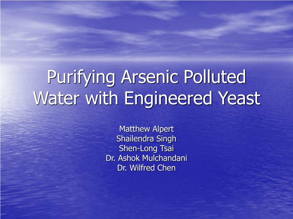purifying arsenic polluted water with engineered yeast l.