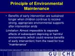 principle of environmental maintenance