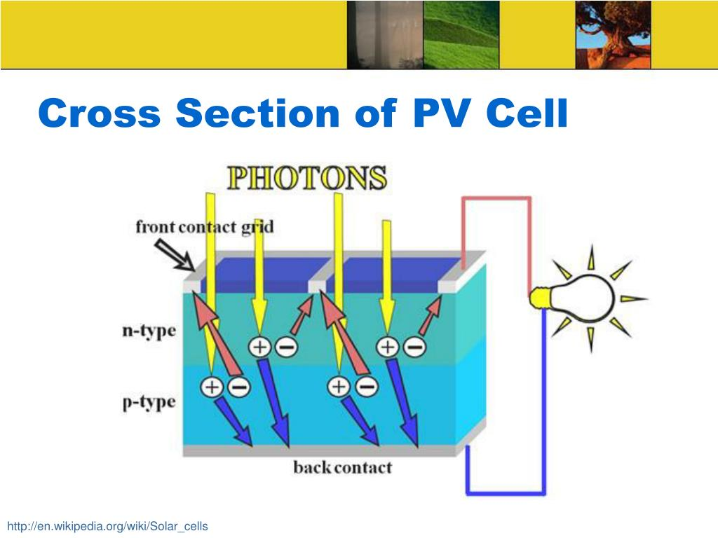 Cross Section of PV Cell