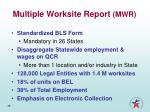 multiple worksite report mwr