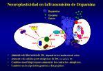 neuroplasticidad en latransmisi n de dopamina