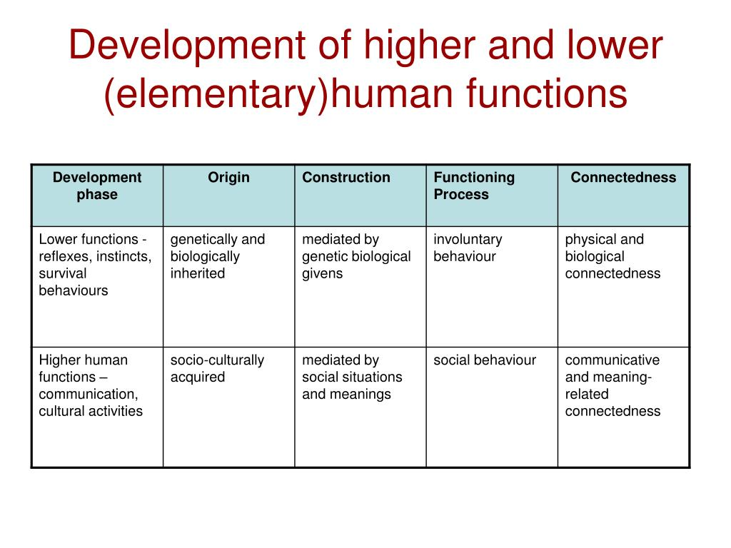Development of higher and lower (elementary)human functions