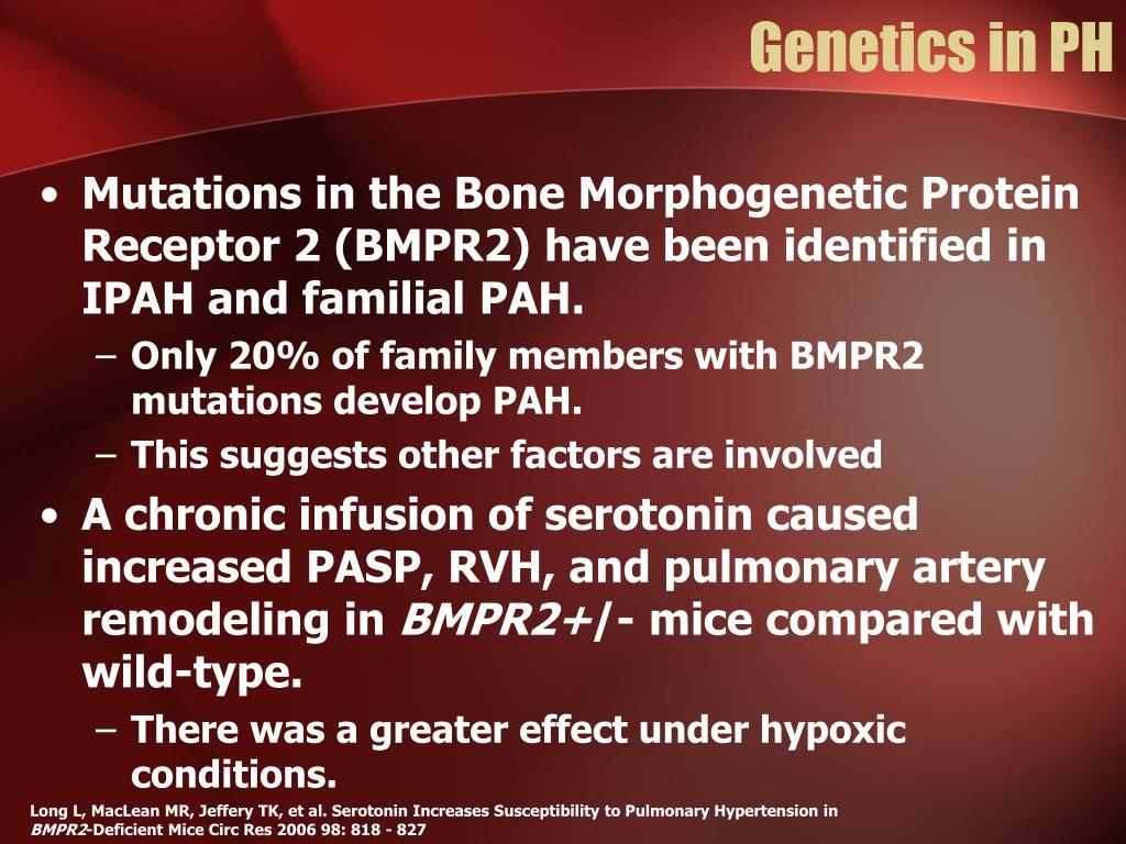 Genetics in PH
