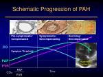 schematic progression of pah