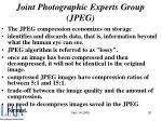 joint photographic experts group jpeg