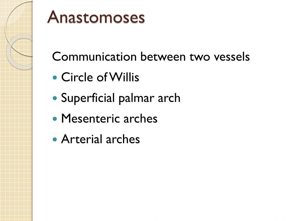 Anastomoses