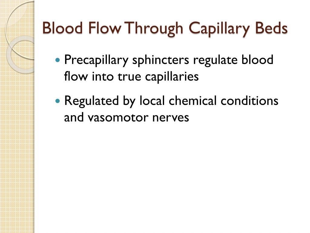 Blood Flow Through Capillary Beds