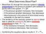 what determines blood flow