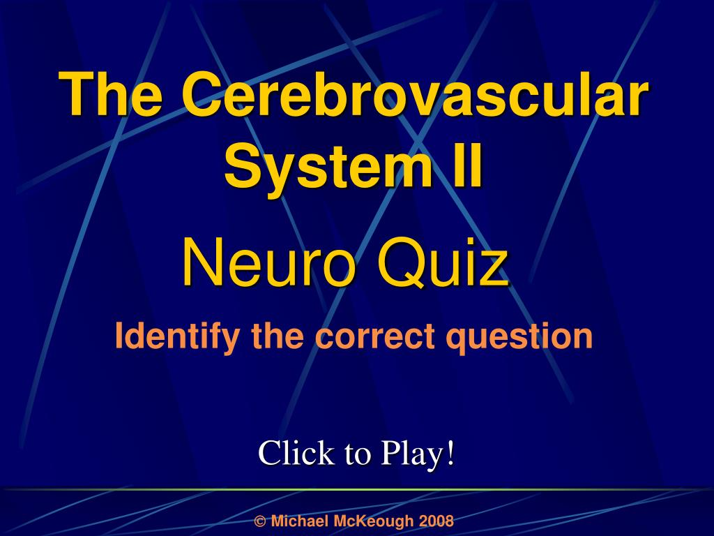 The Cerebrovascular System II
