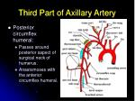 third part of axillary artery