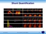 shunt quantification
