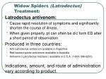 widow spiders latrodectus treatment31