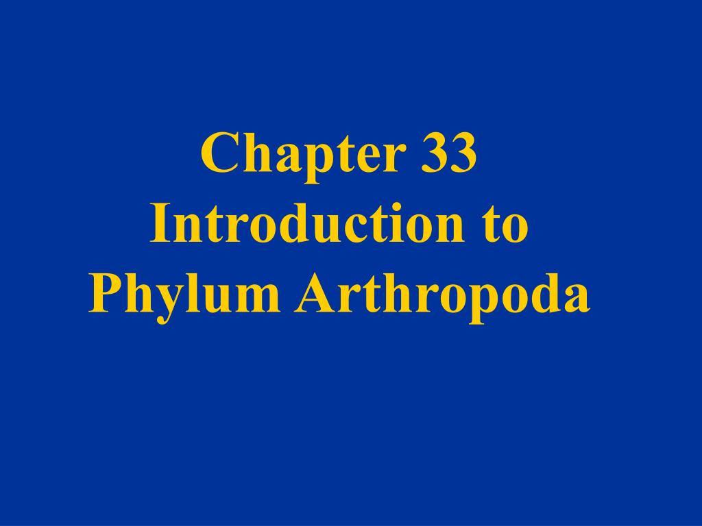 chapter 33 introduction to phylum arthropoda l.
