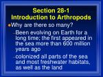 section 28 1 introduction to arthropods10
