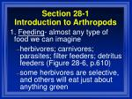 section 28 1 introduction to arthropods19