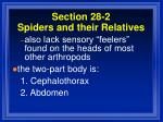 section 28 2 spiders and their relatives49
