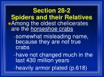 section 28 2 spiders and their relatives52