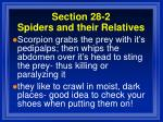 section 28 2 spiders and their relatives62