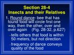 section 28 4 insects and their relatives100