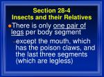 section 28 4 insects and their relatives80