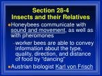 section 28 4 insects and their relatives99