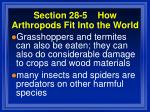section 28 5 how arthropods fit into the world107