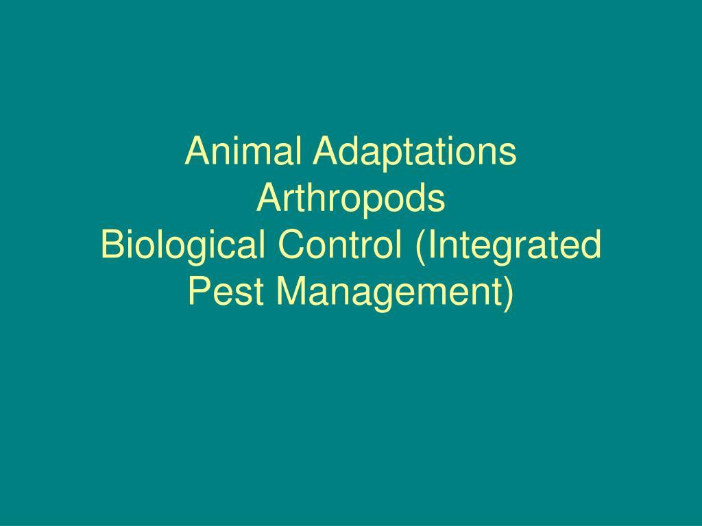 animal adaptations arthropods biological control integrated pest management l.