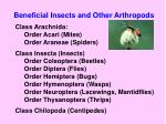 beneficial insects and other arthropods2