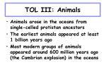 tol iii animals24