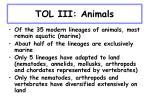 tol iii animals26