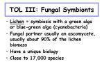 tol iii fungal symbionts
