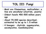 tol iii fungi5