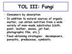 tol iii fungi7