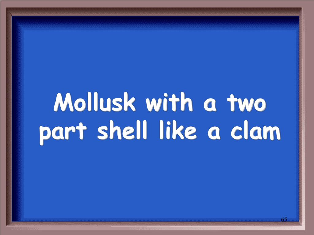 Mollusk with a two part shell like a clam