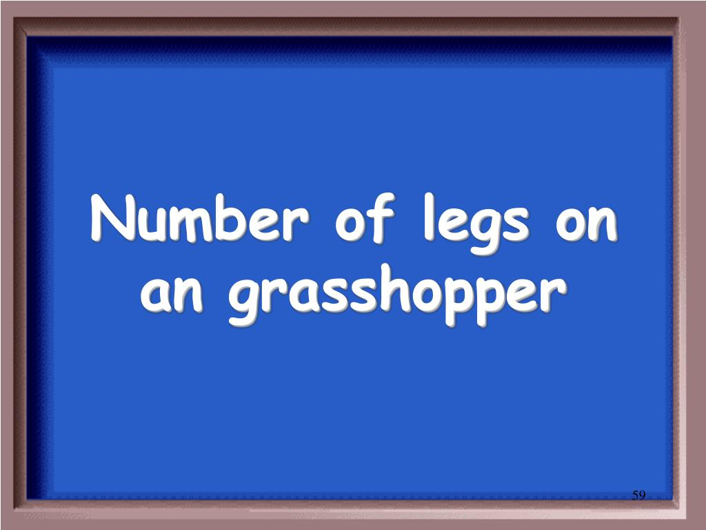 Number of legs on an grasshopper