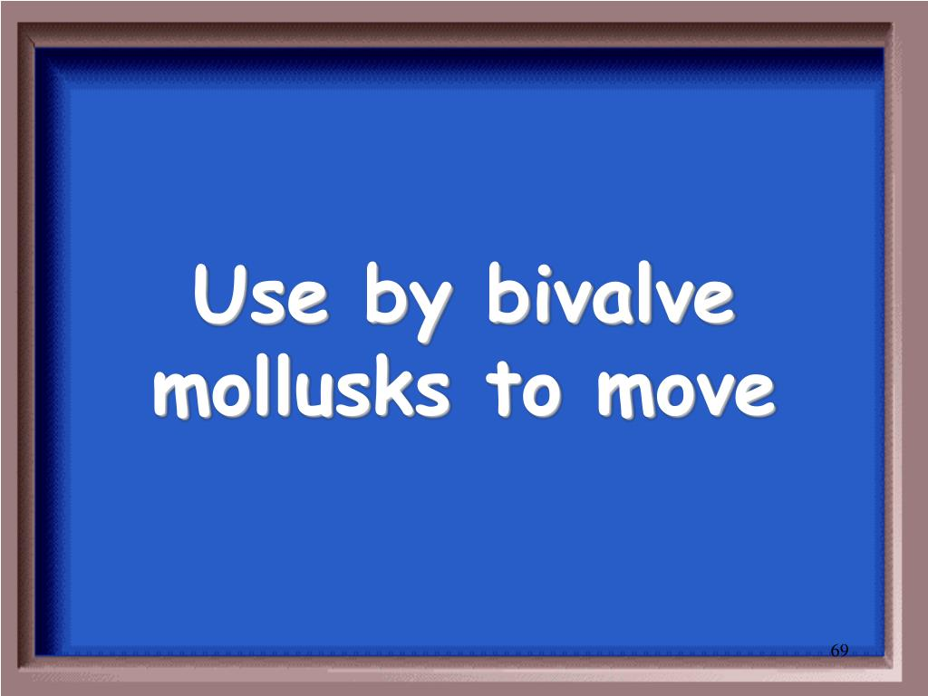 Use by bivalve mollusks to move