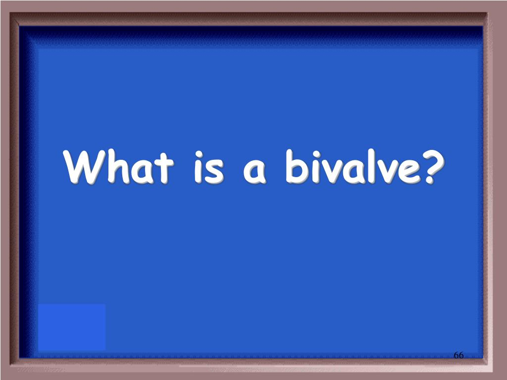 What is a bivalve?
