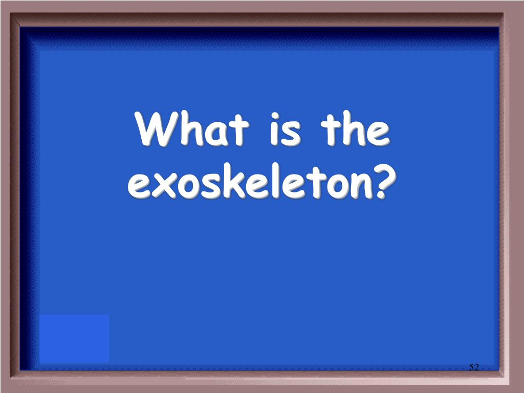 What is the exoskeleton?