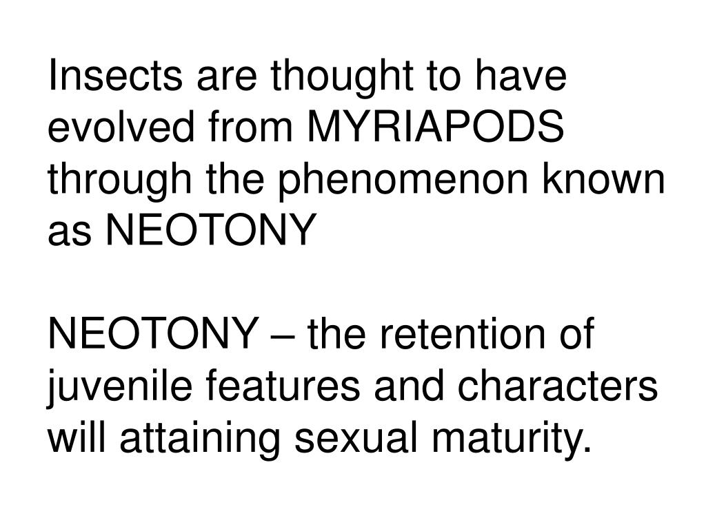 Insects are thought to have evolved from MYRIAPODS through the phenomenon known as NEOTONY