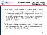 a gender and pro poor value chain analysis