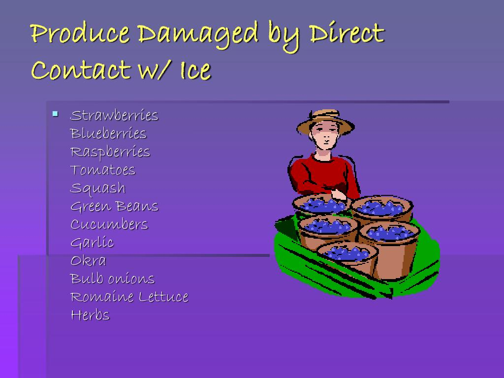 Produce Damaged by Direct Contact w/ Ice