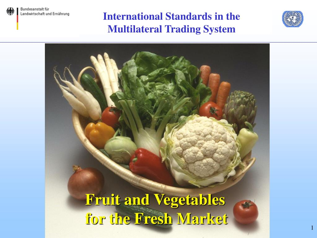 international standards in the multilateral trading system l.